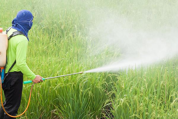 Halk Sağlığı için Pestisit Bağımlılığından Kurtulmalıyız